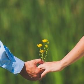 Kata és Janó - A Pitypangosporta lakóinak kerti esküvője
