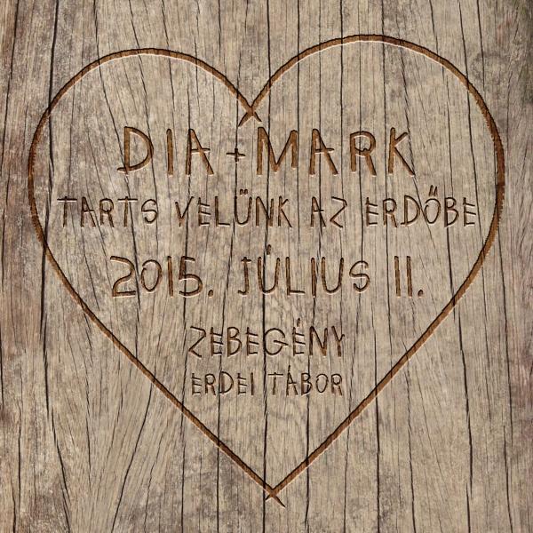 Dia_Mark_eskuvo