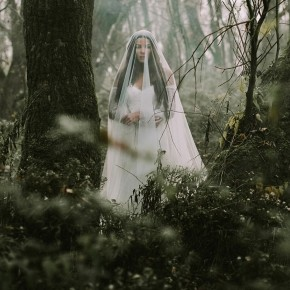 Wilderness by Nora Sarman & Pinewood Weddings