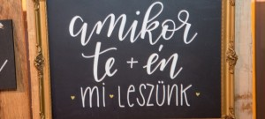 IVMenyasszonyiBorze_feature